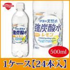 サンガリア 伊賀の天然水 強炭酸水 レモン 500ml ペットボトル×24本  PET ペットボトル スパークリング