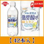 サンガリア 伊賀の天然水 強炭酸水レモン 500ml