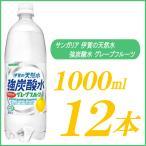 強炭酸水 1l サンガリア 伊賀の天然水 強炭酸水 グレープフルーツ 1000ml×12本 PET ペットボトル スパークリング