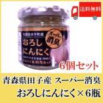 青森産 田子産にんにく スーパー消臭おろしにんにく 70g×6個セット 送料無料 ポイント消化