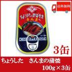 ちょうした さんまの蒲焼 缶詰 100g×3缶 送料無料 ポイント消化