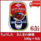 全国送料無料 ちょうした さんまの蒲焼 100g × 6缶