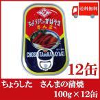 ちょうした さんまの蒲焼 缶詰 100g×12缶 送料無料 ポイント消化