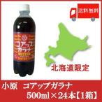 全国送料無料 北海道限定 オバラ コアップガラナ500ml×24本(1ケース)