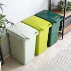 ダストボックス 45L 45リットル おしゃれ ゴミ箱 キッチン ごみ箱 スリム 収納 リビング フタ付き 分別 屋外 ふた ふた付き カウンター