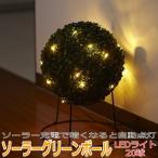 ソーラーグリーンボール LEDライト 20球 (ソーラー充電 センサーライト 自動点灯 自動消灯)