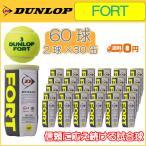 DUNLOP ダンロップ FORT フォート 2球缶 1箱 30缶 60球 硬式テニスボール (R-T)