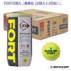 ダンロップ テニス ボール  FORT(フォート)『2球入×30缶』(DFEYL2TIN)