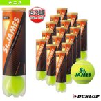 ダンロップ テニスボール  St.JAMES(セントジェームス)『4球×15缶』テニスボール(STJAMESE4CS60)(期間限定価格!)
