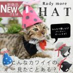 《特別価格/返品・交換不可》 *Radymore とんがり帽子のパーティハット* S/M/Lサイズ 新作 / メール便不可