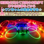 LEDライトフラッシュ付き光るアクセサリーチューブ 【ブルー・犬用】 夜間を安全にお散歩