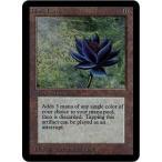 英 LEA Black Lotus リミテッド・エディション・アルファ Limited Edition Alpha