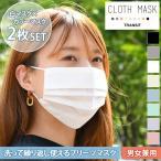 マスク 夏用 洗える ピンク 涼しい プリーツマスク 夏マスク 大きめ 大きいサイズ 大人 2枚セット 2枚組 男女兼用 サステナブル フェイス ポイント消化