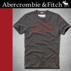 ショッピングAbercrombie アバクロ Tシャツ 半袖 ダークグレー WOODSFALL TRAIL TEE 123-238-1471-014