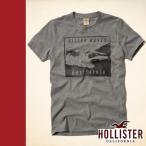 ホリスター  hollister Tシャツ 半袖 グレー BONEYARD BEACH T-SHIRT Abercrombie&Fitch姉妹ブランド