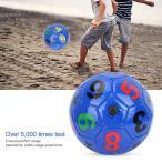 サッカーボール 2号 中・小学生の自主練専用 小さいボール レジャー用 やわらかい 軽量 パープル