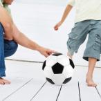 サッカーボール 5号練習球?子供用 レジャー ファミリースポーツ 小学校用