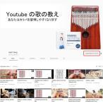 GECKO елеъеєе╨ 17 keys Kalimba ┐╞╗╪е╘еве╬д╚EVA╣т└н╟╜╩▌╕юе▒б╝е╣бве╧еєе▐б╝бве╣е┐е╟егемеде╔бг
