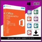最新 Microsoft Office 2019 2PC プロダクトキー [正規版 /永続 /ダウンロード版 /Office 2019 Professional Plus/ インストール完了までサポート致します]