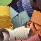 SIC ポリエステルペタシャムリボン 6mm 1メートル 服飾 手芸 SHINDO
