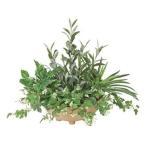光触媒人工観葉植物 お部屋の消臭、除菌効果で空気をクリーンに