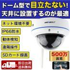 防犯カメラ 屋外屋内 ドーム型防犯カメラ 1080P 200万画素 動体検知 録画録音 SDカード録画対応 プライバシー保護【GB206】