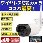 防犯カメラ 屋外屋内 ワイヤレス監視カメラ屋外IP66防水1080P 遠隔監視 動体検知 双方向音声通話可能 日本語アプリ対応 日本語説明書付き【TR2-X20-AP】