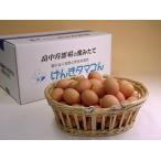 卵 鶏卵 普段使い卵160個入(特撰吟味夕映卵)
