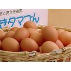 卵 鶏卵 普段使い卵80個入(特撰吟味夕映卵)