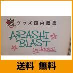 嵐 ARASHI 「BLAST in Hawaii ハワイ」 コンサート 2014 公式グッズ フード付きロングマフラータオル