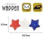 ワッペン スパンコール アイロン アップリケ かわいい スター 星 縦4.5cm×横10.7cm メール便可