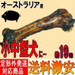 ポークボーン(豚の骨)