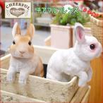 チアフルフレンズ D ウサギのリタ・ルル ガーデニング雑貨 置物