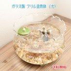 フリル金魚鉢 大 ガラス製 メダカ 水槽 水鉢 アクアリウム 熱帯魚