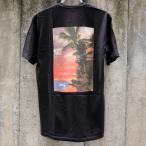ステューシー ISLE O' DREAMS Tシャツ ブラック