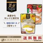 クレンズフードシリーズ 美食スタイルデリ×2個セット(粉末スープ)