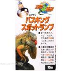 ズーメッドジャパン レプティ バスキングスポットランプ(集光) 75W 【在庫有り】