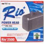 Rio2500 50Hz