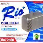 Rio2500 60Hz