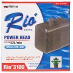 Rio3100 60Hz