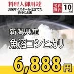 ショッピングお年賀 お米 10kg コシヒカリ 米作り名人が作った (5kg×2) 新潟県魚沼産 検査一等 28年産