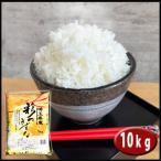 お米10kg (5kg×2袋) 米 白米 彩のきずな  あすつく 埼玉県産 30年産