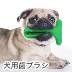 犬用歯ブラシ 小型犬用 中型犬用 大型犬用 ペット ペットケア 犬用おもちゃ デンタルケア かわいいデザイン 代引不可