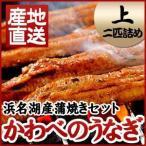 静岡県 産地直送 浜名湖産 鰻のかば焼き 上 蒲焼二匹詰め(約110g〜120g×2匹) タレ15ml、山椒2袋付 かわべのうなぎ かば焼き