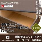 樹脂畳ユニット ロータイプ・幅60cm・ブラウン 収納畳 畳ベンチ 畳ボックス 高床式ユニット畳 畳ベッド シングル たたみベッド スツール 業務用 PPP 代引不可