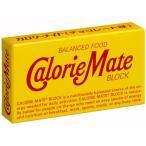カロリーメイト チョコレート味 2本