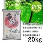 米 日本米 特Aランク 産地直送 25年度産 新潟県 魚沼産 こしひかり 20kg (5kg×4袋) JA直送 ポイント10倍