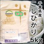 Aランク 28年度産 千葉県産 こしひかり 5kg 特別栽培米 新米 ポイント10倍