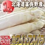 蘆筍 - ご予約販売 北海道富良野産 白い貴婦人こと高級食材 ホワイトアスパラ 最高品質の秀品 Lサイズ以上1kg