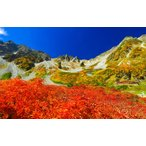 絵画風 壁紙ポスター  -地球の撮り方- 日本一の紅葉、涸沢カールの絶景と奥穂高岳登山 日本の絶景 キャラクロ C-ZJP-067W2 (ワイド版 603mm×376mm)